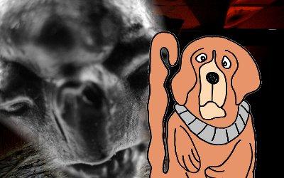 hund-entfuehren